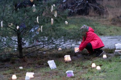 Natuurbegraafplaats De Utrecht  Mid Winter  2